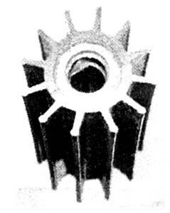 GIRANTE R.O. JAB.17370-001